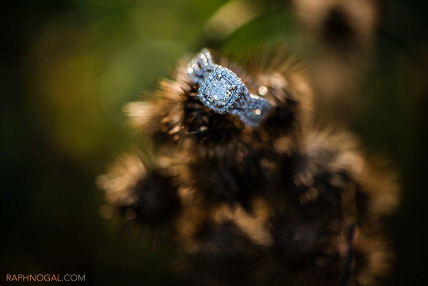 mississauga-engagement-photos-alex-danny-6